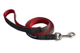 Dog Leash, Buddy & Co. Classic Denim & Nylon Pet Leash 4ft 5/8-inch – Fixed Lead – Ideal for Teacup / Puppy / Small Dogs