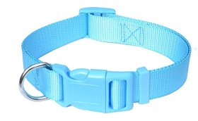 Sky Blue Dog Collar for Puppy Small Dogs, Adjustable 10-16″ 3/4-Inch Small Size