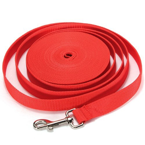 Water & Wood Red 10FT Long Dog Puppy Pet Puppy Training Obedience Lead Leash