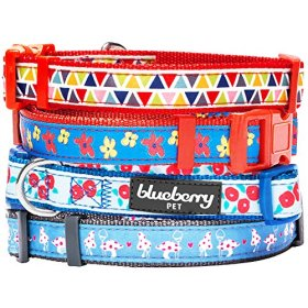 Blueberry Pet 3/8-Inch Spring Scent Inspired Floral Garden Basic Polyester Nylon Puppy Dog Collar, X-Small, Blue Magic