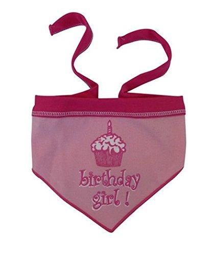 I See Spot's Pet Scarf Bandanna, Birthday Girl, Large, Pink
