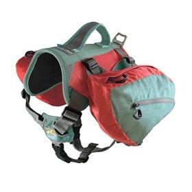 Kurgo Baxter Dog Backpack (Sea Glass, Baxter (30-85lbs))