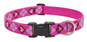 Lupine 1-Inch Puppy Love 12-20-Inch Adjustable Dog Collar for Medium and Large Dogs
