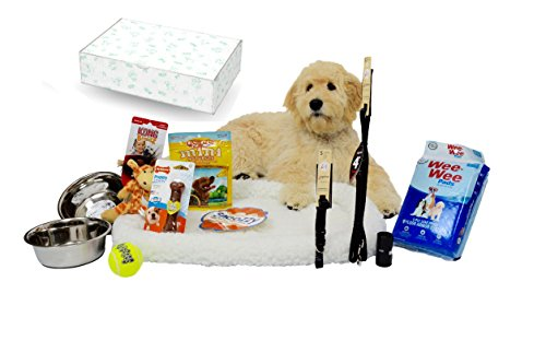 Complete Puppy Starter Kit Bundle– Everything You Need for a New Puppy, in a Holiday Gift Box! Puppy Starter Pack / Puppy Starter Box with Brand Name, 5 Star Brands!