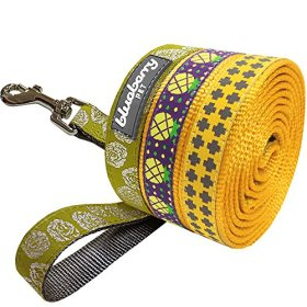 Blueberry Pet 3/8-inch by 5-Feet Gold Cross Print Basic Nylon Dog Leash Lead for Puppy, X-Small