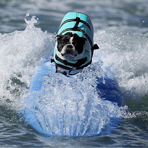 Pet Lifte Preserver – All Sizes – Dog Life Vest Jacket Doggy Life Jacket Sky Blue Medium