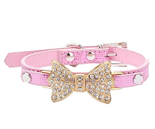 Dog Collars For Small Puppies