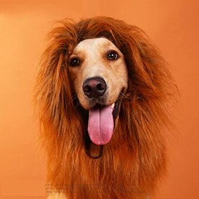 CatYou® Medium Large Dog Christmas Festival Party Fancy Dress Up Lion Mane Wig, Golden Retriever Costume
