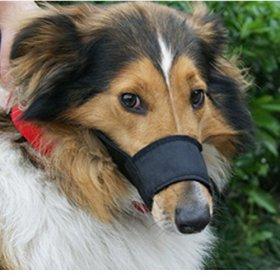 Mkono Adjustable Dog/puppy Muzzle Stop/anti Biting Barking Nipping Chewing (XS)