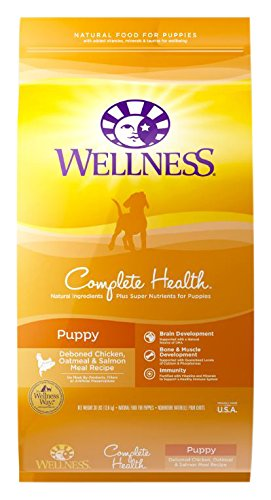 Wellness Complete Health Puppy Chicken, Salmon & Oatmeal Natural Dry Dog Food, 30-Pound Bag