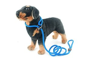 Strimm Adjustable Pet Dog Puppy Rope Slip Loop Leash Lead and Collar for Medium Dogs-Blue 10mm