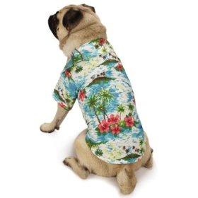 Casual Canine Hawaiian Breeze Camp Shirt, Large, Blue