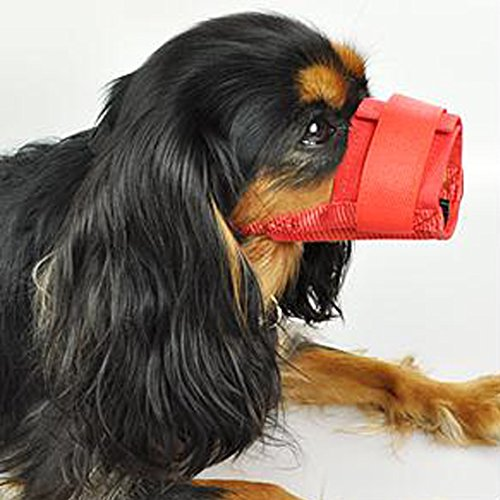 Mkono Adjustable Dog/puppy Muzzle Stop/anti Biting Barking Nipping Chewing Mesh Mask Red (XXL)