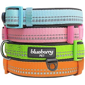 Blueberry Pet Basic Collars for Dogs 5/8″ Small 3M Reflective Spring Pastel Baby Blue Adjustable Padded Dog Collar with Tag Holder, Matching Harness Available Separately