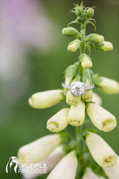Dallas Arboretum Engagement Ring Shot