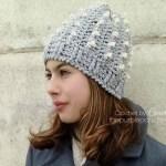 Winter Berry Beanie – Free Crochet Pattern
