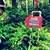 frozen-drinks-sign