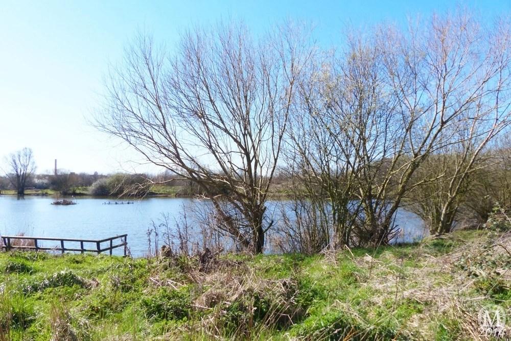 the-chase-nature-reserve-dagenham-essex7