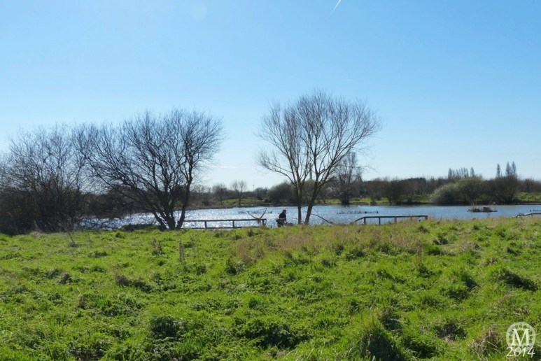 the-chase-nature-reserve-dagenham-essex86