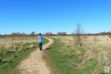 the-chase-nature-reserve-dagenham-essex89