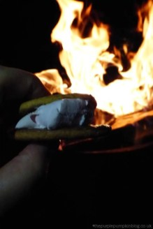 Things To Do Around A Campfire - Make S'mores