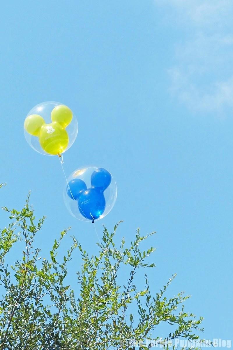 Lost Balloons at Magic Kingdom