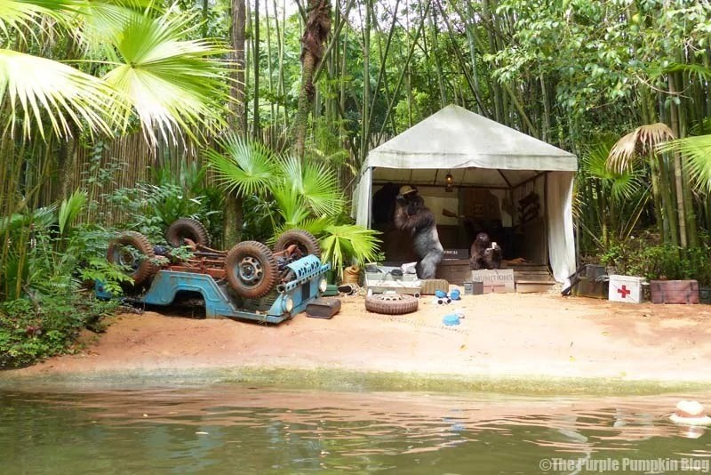 Disney A-Z - Jungle Cruise, Magic Kingdom
