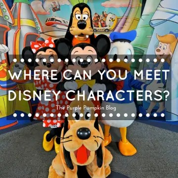 Where Can You Meet Disney Characters