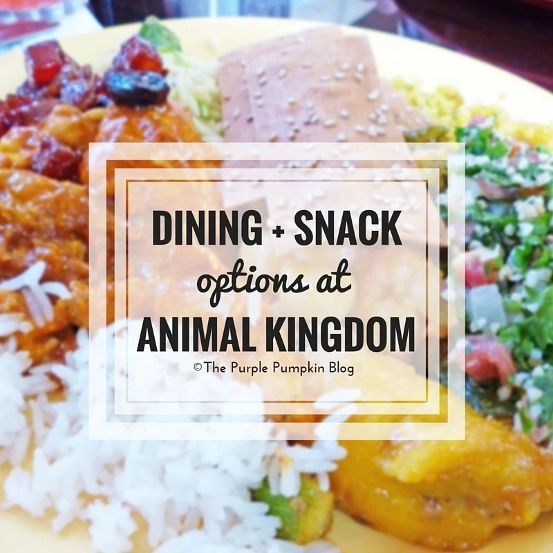 Dining + Snack Options at Animal Kingdom