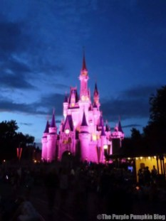 Magic Kingdom Cinderella Castle 2011
