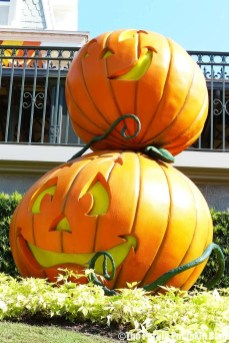 Pumpkins at Magic Kingdom