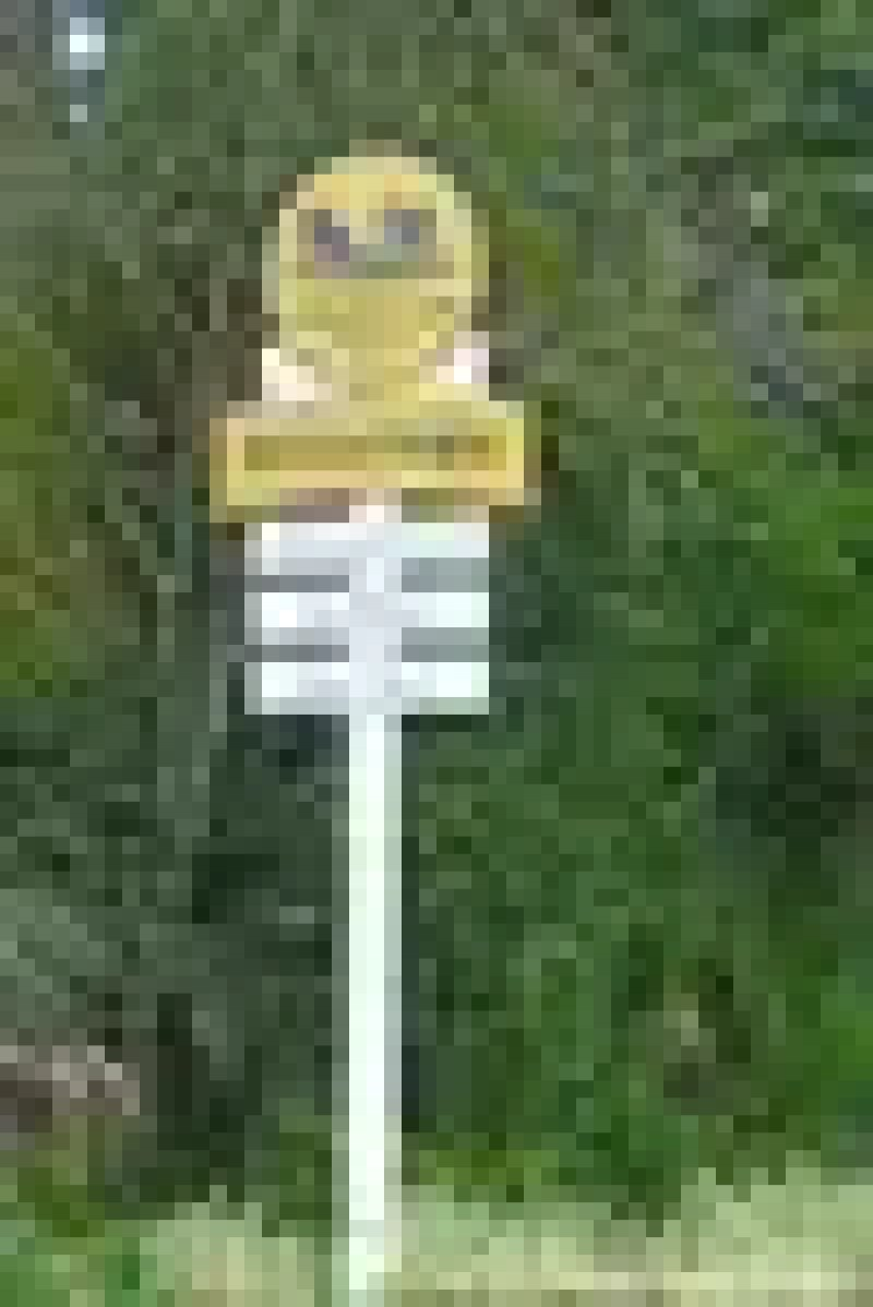 Disney Old Key West