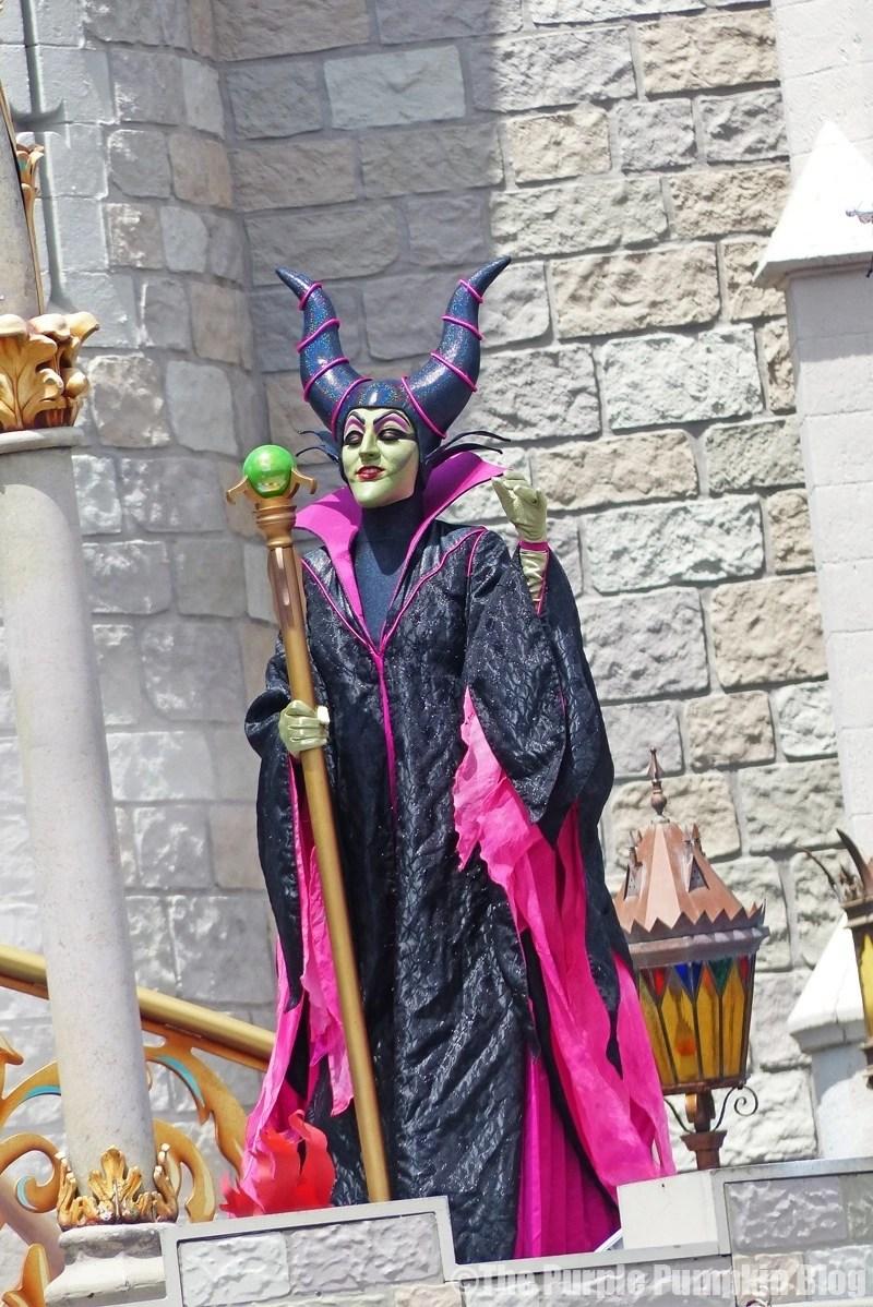 Magic Kingdom - Dream Along With Mickey