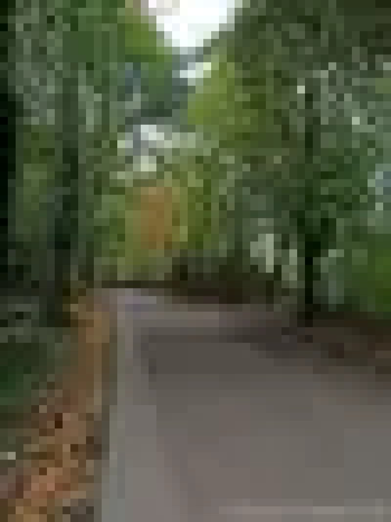 Reasons To Love Autumn - Walks in the Park