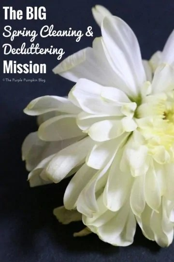 The Big Spring Cleaning & Decluttering Mission