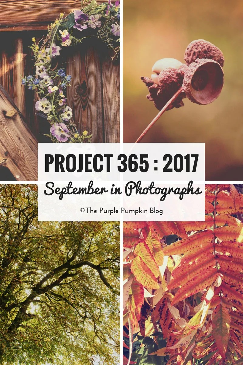 Project 365 - 2017 - September