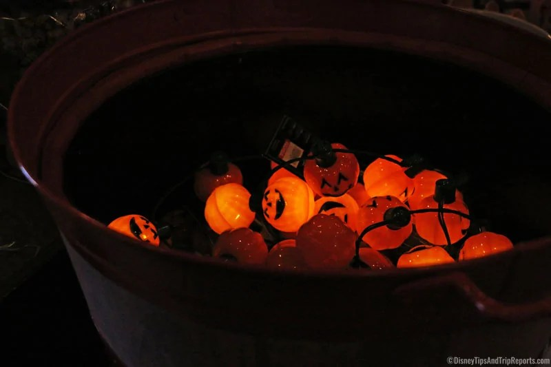 Pumpkin Lights at Magic Kingdom