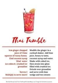 Mocktail Recipe Cards Sample