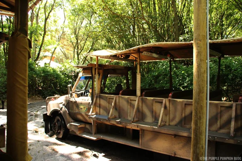 Kilimanjaro Safaris - Animal Kingdom