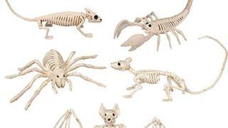 Halloween Animal Skeleton