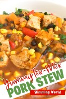 Yummy Tex-Mex Pork Stew - Slimming World
