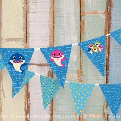 Strings Baby Shark Bunting