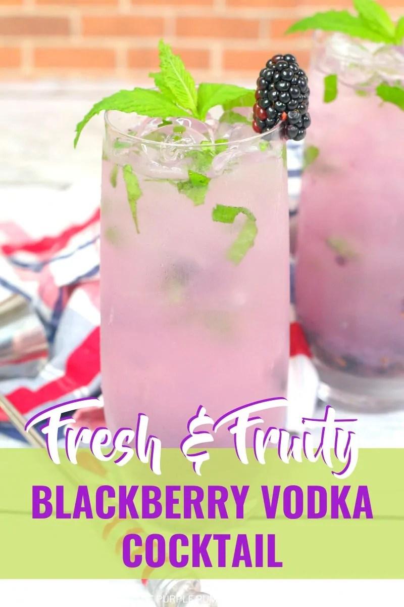 Fresh & Fruity Blackberry Vodka Cocktail