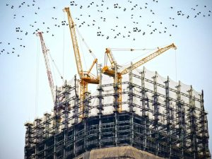 Formatting a book - Under Construction site with Birds