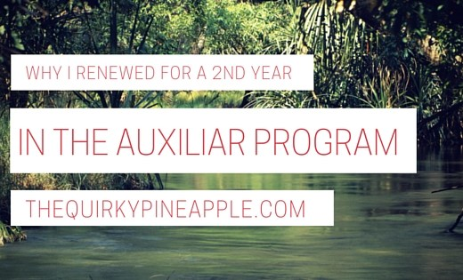 2nd_year_renewing_auxiliar_program_thequirkypineapple