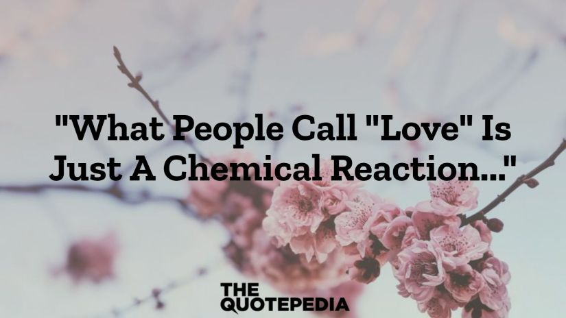 """""""What People Call """"Love"""" Is Just A Chemical Reaction..."""""""