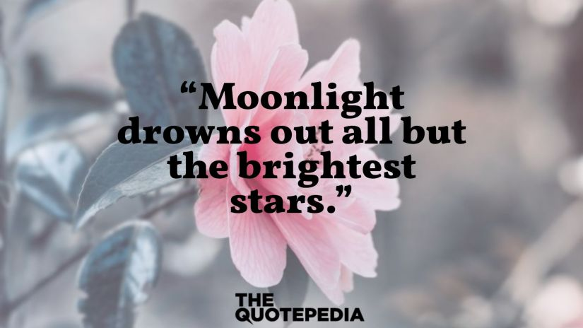 """""""Moonlight drowns out all but the brightest stars."""""""
