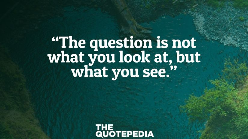 """The question is not what you look at, but what you see."""