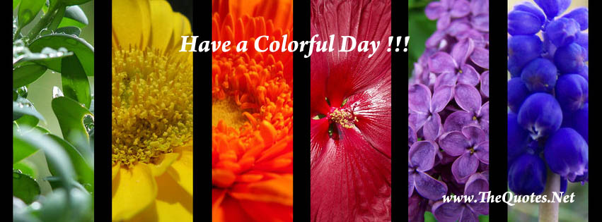 Facebook Cover Image Images In 'Holi' Tag TheQuotes Net