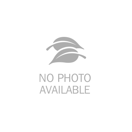 TheraBand High Resistance Band - TheraBand